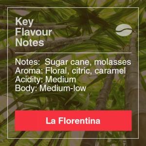 LA-FLORENTINA